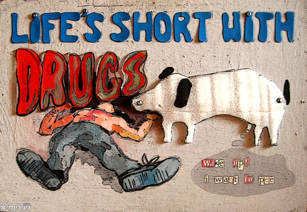 anti drug Need event ideas for national drug facts week check out nida's list of fun activities that encourage teens to shatter the myth about drug abuse.